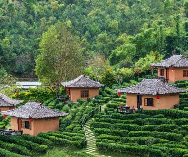צ'אנג מאי (chiang mai)